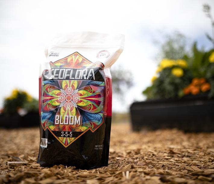Plants prosper in GeoPot Fabric Pots with help from Geoflora BLOOM organic dry fertilizer