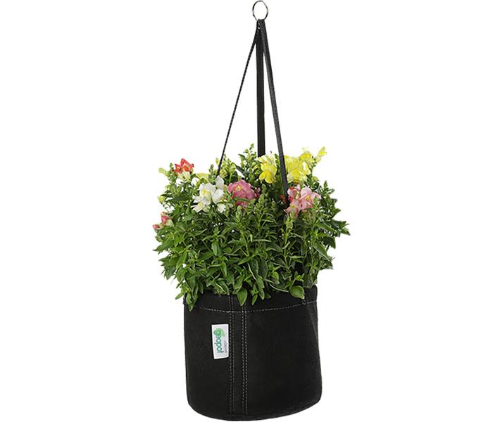 Beautiful blooms thriving in the GeoPot Hanging Garden Basket